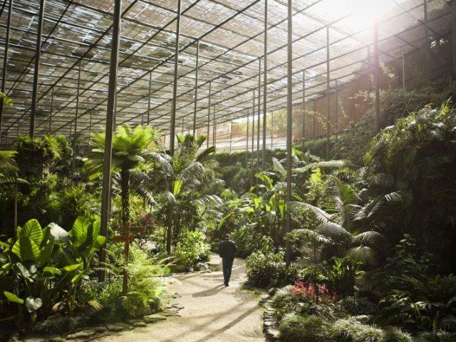 5 parques e jardins em Lisboa que você não pode perder